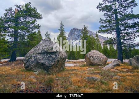 Lembert Dome Tuolumne Meadows et dans le Parc National Yosemite. La Californie. USA