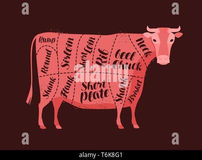 Schéma de la vache pour le boucher. Boucherie, viande de boeuf, vector illustration