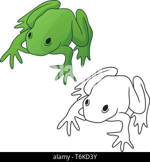 Grenouille dans les tons verts et couleur contour noir isolé version vector illustration Banque D'Images