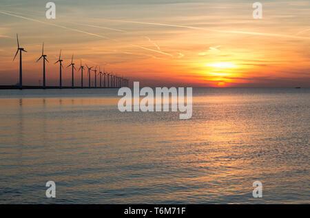 Dutch off shore éoliennes au cours d'un beau coucher du soleil Banque D'Images