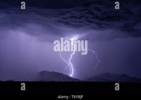 Un éclair illumine le ciel nocturne et les montagnes Dragoon grève vis comme une tempête se déplace dans le sud-est de l'Arizona. Banque D'Images