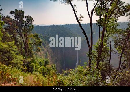 Cascade de Tad Fane, Boloven, Laos, Asie du sud-est