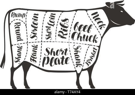 Coupes de boeuf, de la vache ou taureau. La viande de boucherie, vector illustration