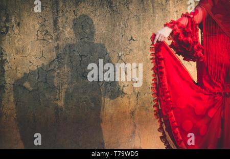 Ombre de femme vêtue de robe flamenco sur mur fissuré, focus sur le mur et l'ombre floue dress Banque D'Images