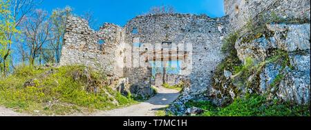 Ruines du château de Tematin, République slovaque, de l'Europe. Destination de voyage. Photo panoramique. Banque D'Images