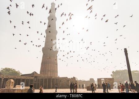 Des oiseaux volent plus de visiteurs, mais ils prennent des photos de l'autre à Qutub Minar, UNESCO World Heritage Site, New Delhi, Inde, Asie Banque D'Images