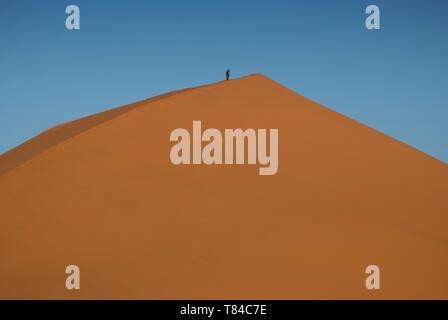 Man climbing dune de sable près de Sossusvlei dans le désert de Namibie, l'Afrique. Banque D'Images