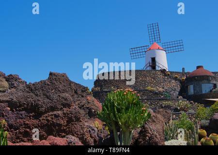 Vue sur jardin de cactus avec son moulin à vent, jardin de cactus à Guatiza, Lanzarote, îles Canaries, Espagne Banque D'Images