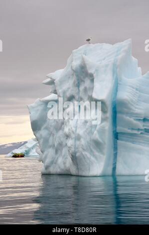 Le Groenland, côte nord-ouest, la mer de Baffin, Fjord d'Inglefield vers Qaanaaq, iceberg et une exploration PolarCirkel bateau (Zodiac) du MS Fram navire Hurtigruten de cruse Banque D'Images