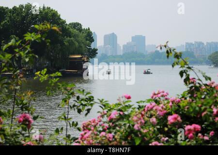 Jinan, Chine, la province de Shandong. 9 mai, 2019. Les touristes voir l'endroit pittoresque Lac Daming Jinan, dans la province de Shandong en Chine orientale, le 9 mai 2019. Credit: Wang Peike/Xinhua/Alamy Live News Banque D'Images