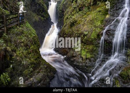 Royaume-uni, Irlande du Nord, l'Ulster, le comté d'Antrim, Les Glens d'Antrim, Laragh cascade dans le parc forestier de Glenariff Banque D'Images