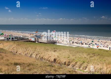 Paysage de dunes sur la plage d'Egmond, mer du Nord , la Hollande, Pays-Bas Banque D'Images