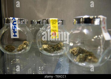13 mai 2019 - Turin, Piémont, Italie - Turin, Italy-May 13, 2019: le cannabis légal en vente dans un magasin de tabac. La marijuana est une substance psychoactive qui est obtenu à partir d'inflorescences séchées de plantes de chanvre femelle. Le Delta-9-tétrahydrocannabinol, appelée le THC est contenue dans toutes les variétés de chanvre, une substance qui rend la plante illégale dans de nombreux pays. Il y a des variétés qui peuvent être cultivées légalement pour lequel la limite à ce contenu est fixé par la loi. En Italie, la vente de cannabis légal a été légalisée, mais ces derniers jours, Matteo Salvini le Ministre italien de l'Intérieur veut faire