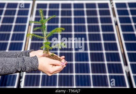 Enregistrement de la nature par l'utilisation de l'énergie solaire green concept. Et accidentellement aussi drôle illusion optique concept, points vacillante, change de place sur le backg Banque D'Images