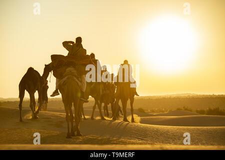 Vue imprenable de certains touristes chameaux dans les dunes du désert du Thar au Rajasthan au cours d'un beau coucher du soleil. L'Inde.