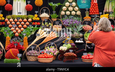 Royal Hospital Chelsea, London, UK. 20 mai 2019. Chelsea Flower Show 2019 Appuyez sur Jour. Credit : Malcolm Park/Alamy Live News. Banque D'Images