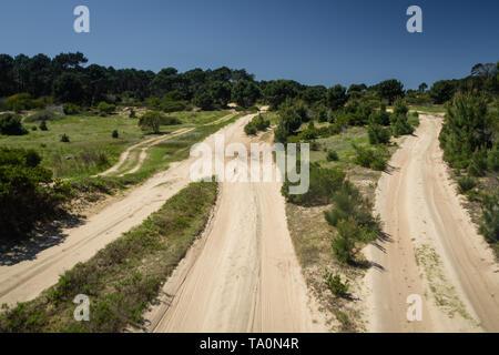 Chemin de sable menant au parc national de Cabo Polonio en Uruguay, 4x4 voyage
