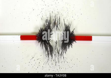 Les lignes de forces autour de deux aimants avec des champs magnétiques contre indiqué avec le fer jetons répartis sur une plaque de verre qui repose sur l'aimant. Banque D'Images