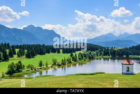 Paysage typique de l'Est de l'Allgäu, vue d'Hergatsrieder Voir Banque D'Images