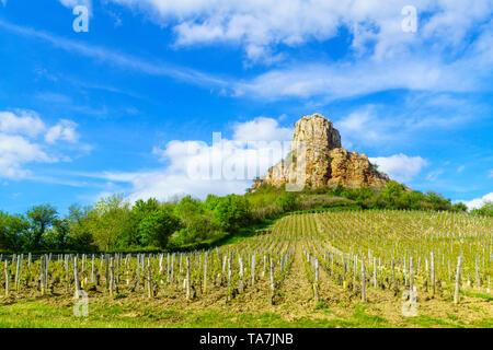 Vue sur la roche de Solutré (la roche), et des vignobles, dans Saône-et-Loire, Bourgogne, France Banque D'Images