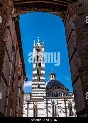 Italie, Toscane, Sienne, la Cathédrale de Sienne, vue par Facciatone