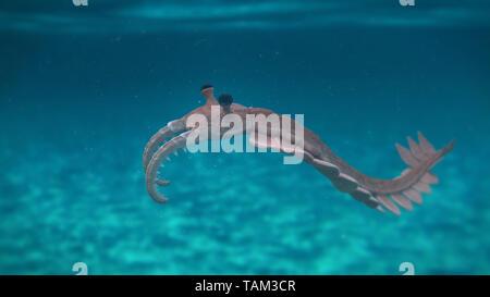 Anomalocaris, créature préhistorique de la période cambrienne (science 3D render)