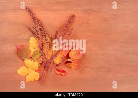 Les feuilles d'automne, tourné par le haut sur un fond de bois rustique foncé avec une place pour le texte, l'image aux couleurs Banque D'Images