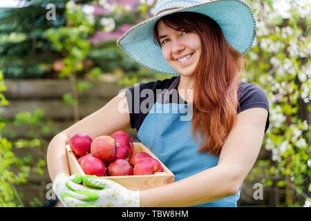 Image of woman in hat avec fort avec des pommes dans le jardin par jour Banque D'Images