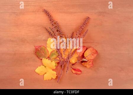 Un bouquet de feuilles d'automne, tourné à partir de ci-dessus, sur un fond de bois rustique foncé avec copie espace, tonique libre Banque D'Images