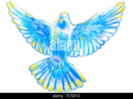 L'aquarelle et l'illustration à l'aquarelle numérique d'oiseau, pigeon en bleu, jaune, symbole de l'Esprit Saint, isolé sur fond blanc. Banque D'Images