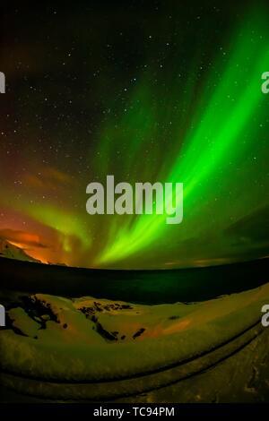 Northern Lights (aurores boréales) vue depuis le long de la E10 près de Reine, Moskenoesoya Island, îles Lofoten, Norvège du Nord, de l'Arctique. Banque D'Images