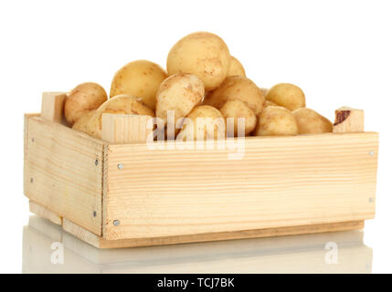 Les jeunes pommes de terre dans une boîte en bois isolé sur blanc close-up Banque D'Images
