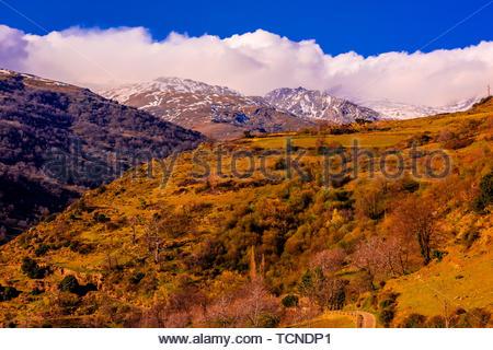 À la recherche de la Sierra Nevada enneigée montagnes au-dessus de Capileira, Las Alpujarras, Province de Grenade, Andalousie, espagne. Banque D'Images