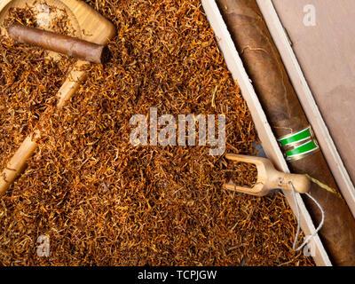 Luxuty grand coffret en bois, et des petits cigares sur feuilles de tabac sec Banque D'Images