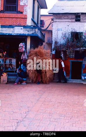 Homme portant un énorme paquet de paille,Katthmandu,Népal Banque D'Images