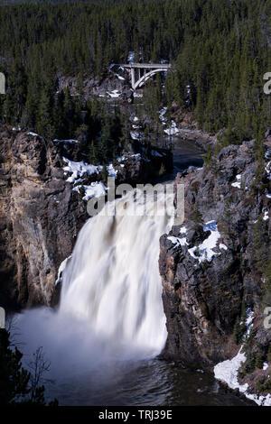 La Yellowstone River coule sur Upper Falls dans le Grand Canyon de la Yellowstone en parc national de Yellowstone Banque D'Images