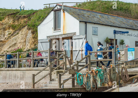 Le bateau Shed Cafe sur le front de mer à l'anse de Lulworth sur la côte jurassique du Dorset, Angleterre, Royaume-Uni. Banque D'Images