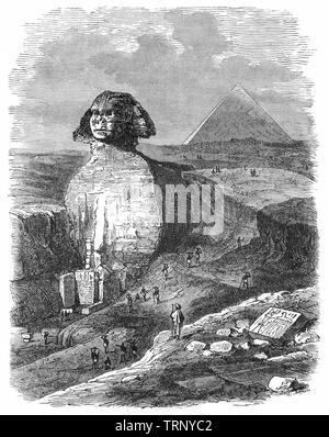Le grand Sphinx de Gizeh, littéralement la terrifiante l'un au milieu de pyramides égyptiennes est une statue en pierre calcaire d'un sphinx, une créature mythique avec le corps d'un lion et la tête d'un humain.donnant directement de l'Ouest à l'Est, il se dresse sur le plateau de Gizeh, sur la rive ouest du Nil à Gizeh, Egypte. Le Sphinx est la plus ancienne sculpture monumentale en Égypte et est communément admis d'avoir été construit par les égyptiens de l'Ancien Empire, sous le règne du Pharaon Khafré. Banque D'Images