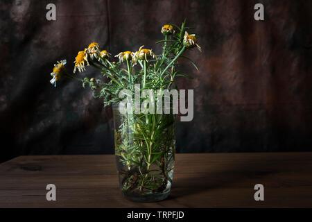 Concept de la mort. Nature morte avec fleurs fanées dans un verre avec de l'eau sur la table en bois avec un arrière-plan sombre. Banque D'Images
