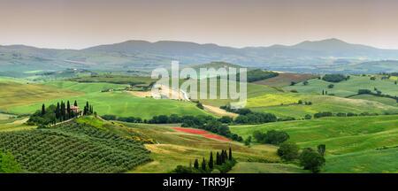 Pienza, Toscane - Juin 2019: magnifique paysage de Toscane en Italie, Podere Belvedere à Val d Orcia, près de Pienza avec Cypress Banque D'Images