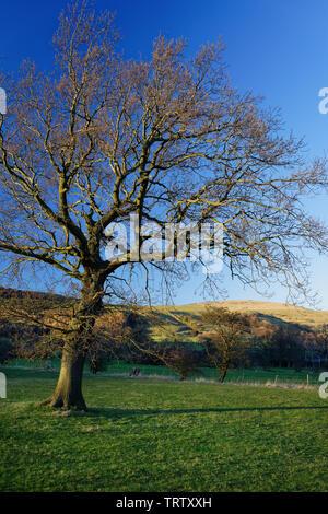 UK,Derbyshire, Peak District,la Grande Arête et perdre l'espoir de Hill Valley près de Castleton Banque D'Images