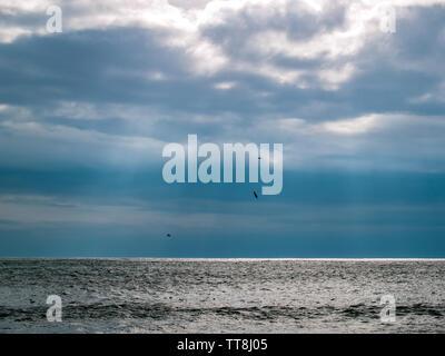 Les oiseaux de voler au-dessus de la mer et aussi flotter sur l'eau. Le soleil brille à travers les lacunes dans le cloud. Près de Limeslade Bay, Swansea, Gower, Pays de Galles, Royaume-Uni