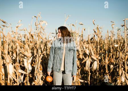 Portrait of woman holding pumpkin au milieu d'un champ de maïs Banque D'Images