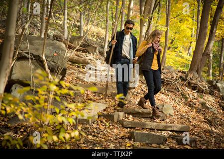 En descendant quelques marches en forêt Banque D'Images