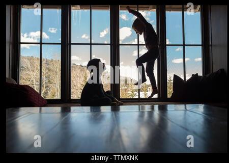 Garçon à la recherche de frère sauter sur lit contre fenêtre dans chambre Banque D'Images