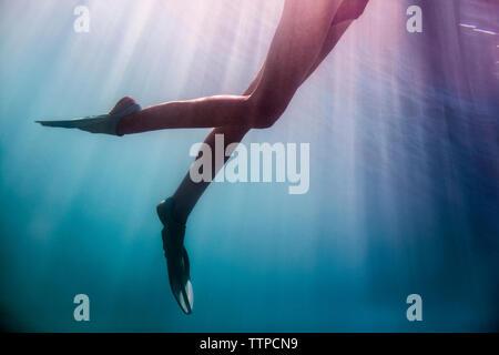 La section basse de jeune femme natation en mer Banque D'Images