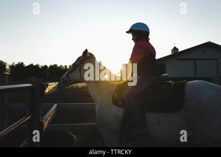 Vue latérale du girl riding horse contre ciel clair à grange pendant le coucher du soleil Banque D'Images