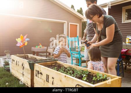 Les parents de jouer avec leurs filles à l'arrière-cour Banque D'Images