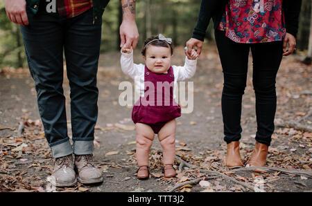 Portrait of baby girl holding parents mains en se tenant sur le terrain en forêt Banque D'Images