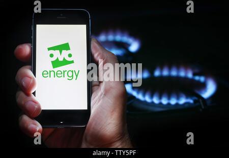 Un homme à la recherche sur le site web logo pour société de l'énergie Énergie OVO sur son téléphone devant sa cuisinière à gaz (usage éditorial uniquement) Banque D'Images
